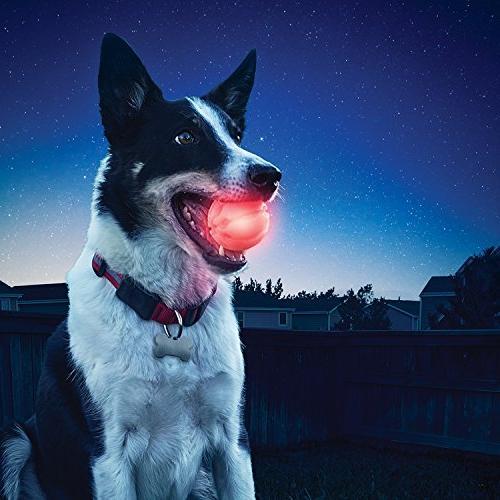 Nite Ize Dog Ball, Light Up Batteries, Red LED