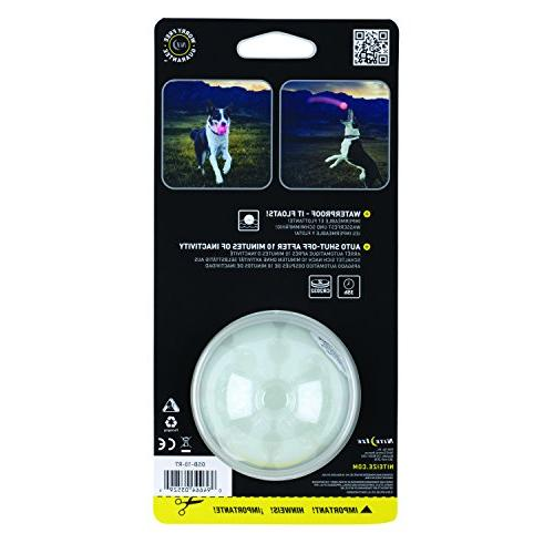 Nite Dog Ball, Up Dog Ball, Replaceable Batteries, LED